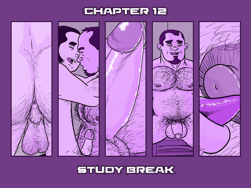 Chapter 12 – Study Break – Cover